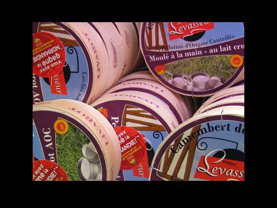 camembert reo lessay Reo cheese dairy - val d'ay dairy add to favorites print reo cheese dairy - val d'ay dairy lire la suite contact 1 rue des planquettes, 50430 lessay, france lower normandy - manche +33 (0)2 33 46 41 33 the quality of the aoc camembert has won 9 gold medals in the general agricultural.
